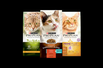 Pro Plan DRY CAT FOOD family shot