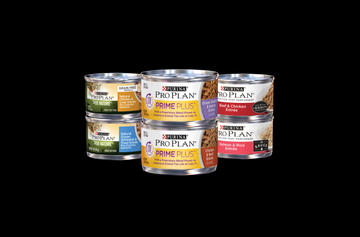 Pro plan WET CAT FOOD family shot