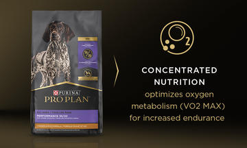 CONCENTRATED NUTRITION   optimizes oxygen metabolism (VO2 MAX) for increased endurance