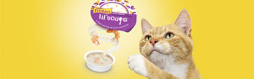 Friskies Lil Soups Homepage Carousel