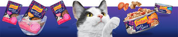 Cat looking at Friskies Stuf'd & Sauc'd and Warm'd & Serv'd Wet Cat Food