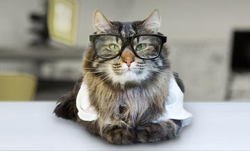 Future_CatScientist