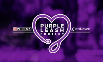 Purina Purple Leash for Domestic Violence