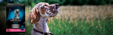 PROPLAN_SENSITIVE_DOG_FOOD_IMAGE