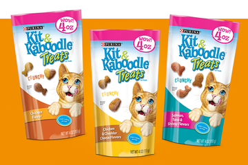 KIT & KABOODLE Treats CTA