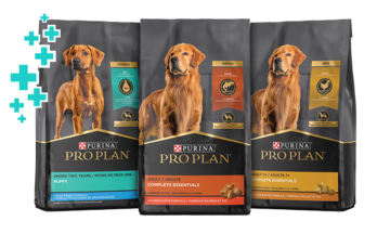 pro plan probiotic dry dog food group package image
