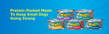 Protein-Packed-Meals-Keep-Small-Dogs-Going-Strong-header.png