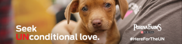 Purina Farms - UNconditional