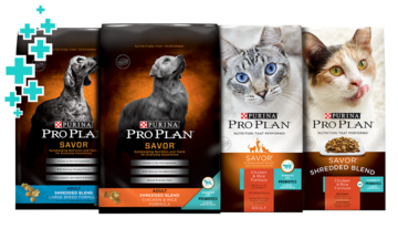 Savor Pet food products