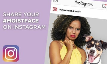 Share your Moistface on Instagram