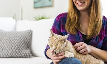 6 Ways to Make Your Cat Feel at Home
