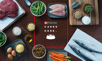 Wholesome ingredients on table Every ingredient at Purina has a purpose