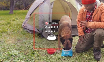 Man feeding his dog while camping purina cares to meet nutritional requirements for all pets