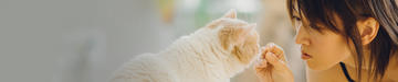 purina-cat-treats-wet-products-header