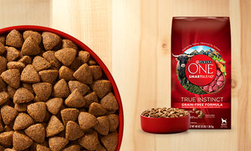 Purina ONE Recommended Dog Food