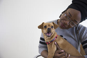 Purina purple leash project pet-friendly domestic violence shelter in NYC