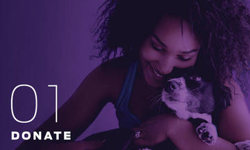 Donate to the Purple Leash Project Image