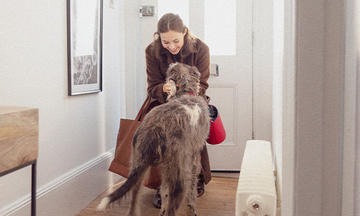 Woman welcoming dog with anxiety