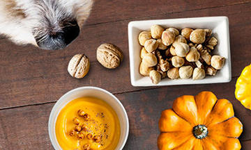can-dogs-eat-pumpkins-sweet-potatoes-nuts