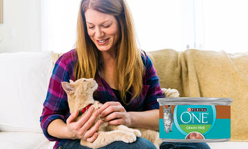 Purina One Grain Free Wet Cat Food