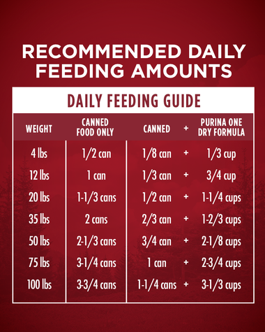 classic ground feeding guidelines