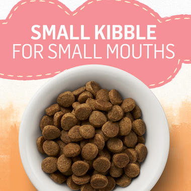 small kibble for small mouths