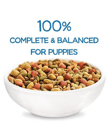 beneful-healthy-puppy-dry-dog-food-complete-balanced