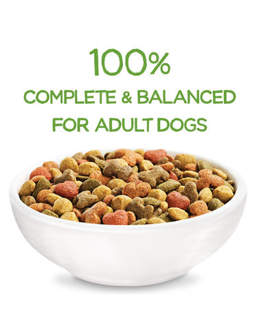beneful-healthy-weight-dry-dog-food-complete-and-balanced