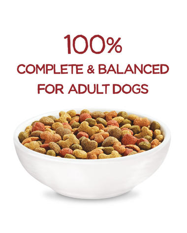 beneful-originals-dry-dog-food-complete-balanced