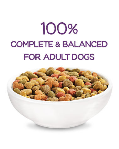 beneful-play-life-complete-balanced-dry-dog-food