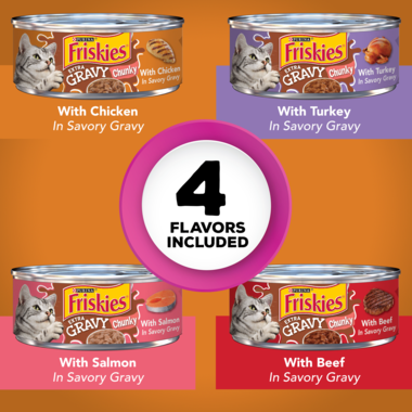 Friskies Extra Gravy Chunky Wet Cat Food Variety Pack 24 Count