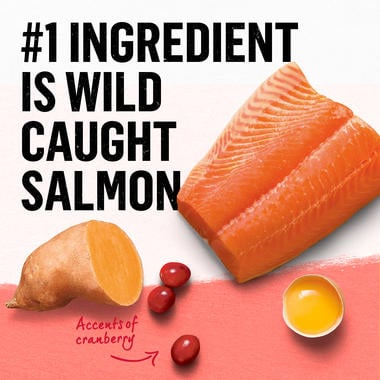 wild caught salmon is number one ingredient