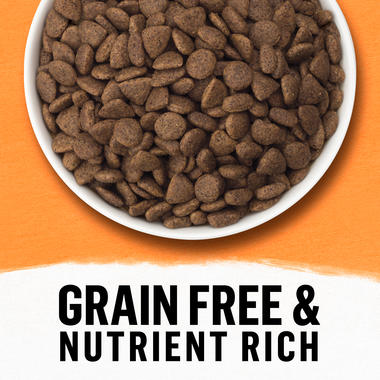 Grain Free and Nutrient Rich