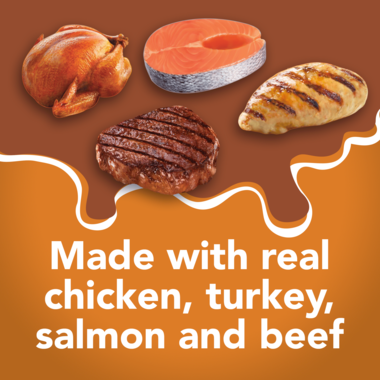 Made with real chicken salmon turkey and beef