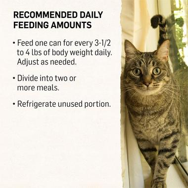 recommended-daily-feeding-amounts