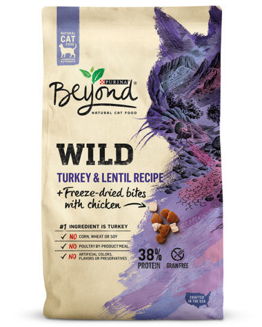 beyond-wild-turkey-lentil-freeze-dried-bites-dry-cat-food