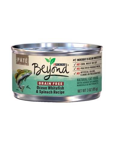 beyond-grain-free-ocean-whitefish-spinach-wet-cat-food