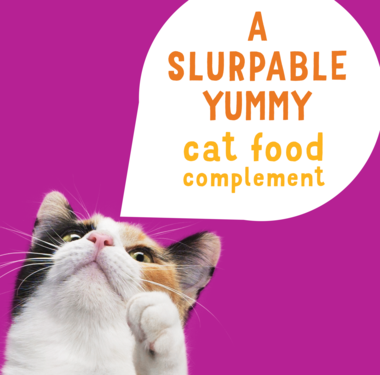 A slurpable yummy cat food