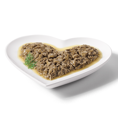 Gourmet-Naturals-tuna-in-gravy-plated