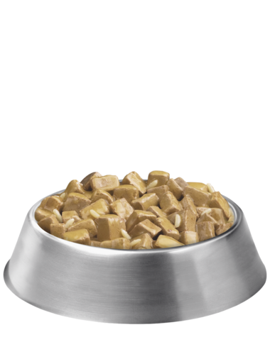 pro-plan-focus-adult-large-breed-chicken-rice-chunk-bowl