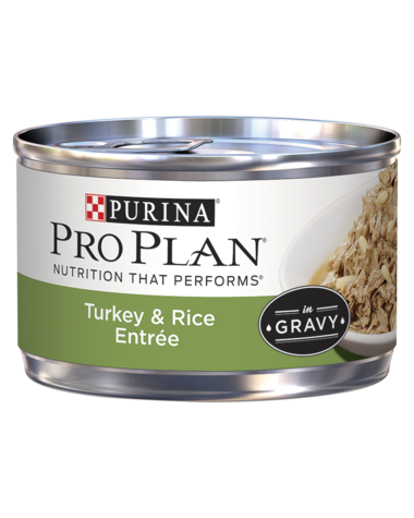 pro-plan-turkey-rice-in-gravy