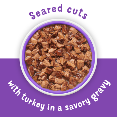 Seared cuts of turkey in gravy