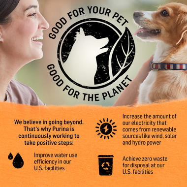 Beyond dog food better for the planet