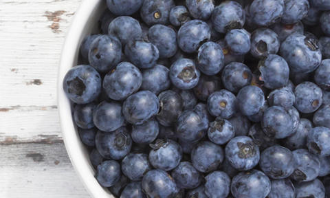 Can Dogs Eat Blueberries? | Purina